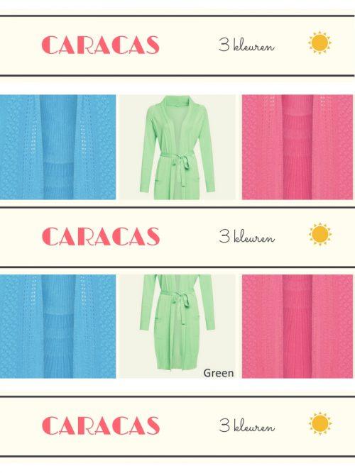 Lien & Giel Caracas Long Cardigan - Fuchsia
